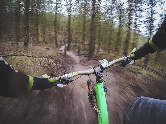 jízda lesem