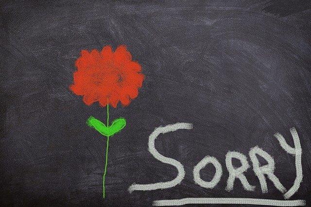 omluva s květinou